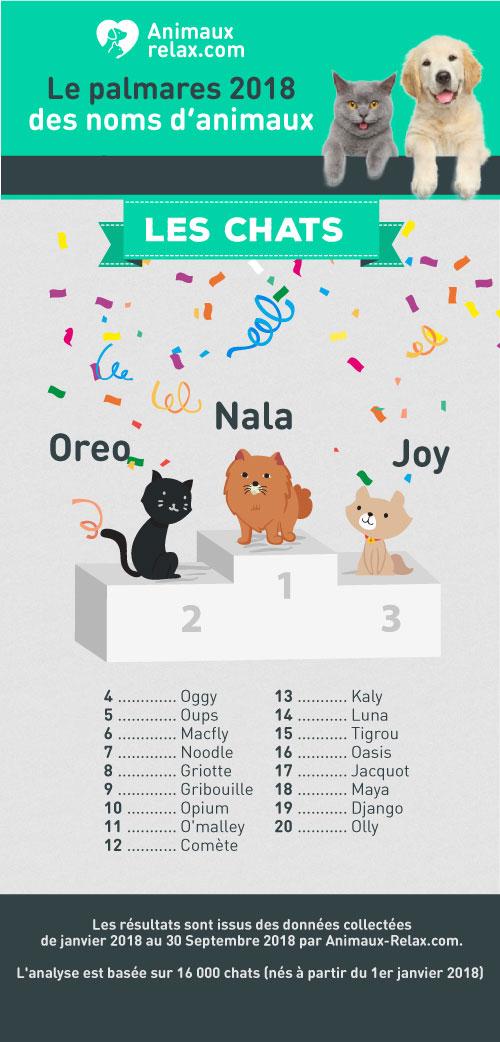 Noms de chats populaires en 2018